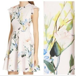 TED BAKER Karsali Elegance Floral Scallop Dress